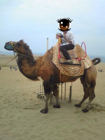 ラクダの画像 p1_21
